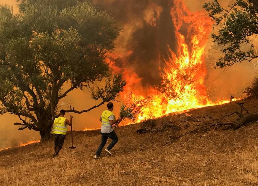 Algeria's fire is under control, Greece sighs with relief