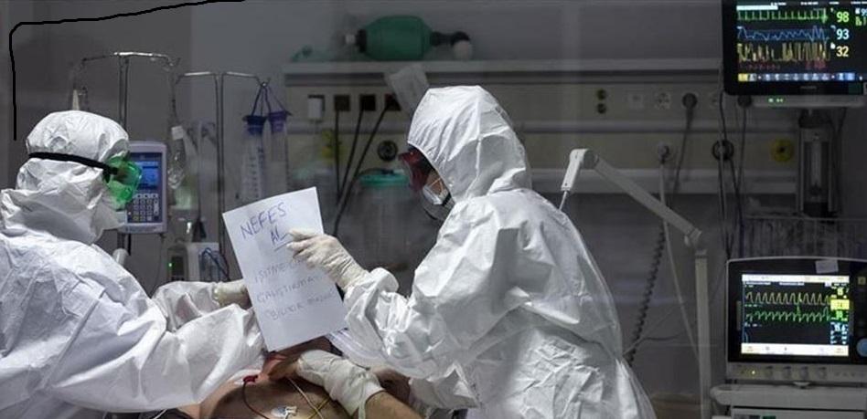 Global Health Determines Zero Infection With Corona Virus - Politics - News
