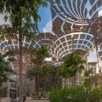 UPS launches 'Future Forest' from Dubai Expo 2020